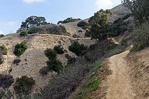 Puente Hills - Puente Hills in Hellman Wilderness Park.