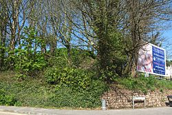 Helston station site in 2016 - the end of the line.JPG