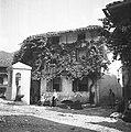 Hiša in znamenje v Breginju 1951.jpg