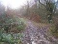 Higher Bridleway junction - geograph.org.uk - 1073366.jpg