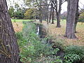 Highfields Park Tottle Brook 9135.JPG