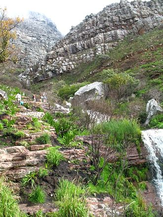 Winter ascent of Table Mountain. Hikers set out on one of the many popular trails Hiking trail going up Table Mountain.jpg