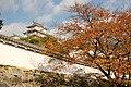 Himeji 2008-11-23 (3254924788).jpg