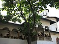Horezu Monastery 2.jpg