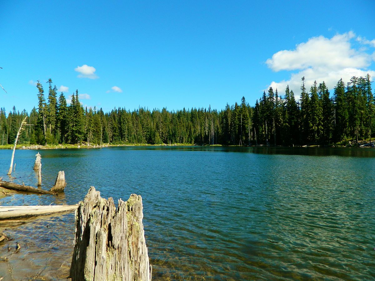 Horseshoe Lake Washington Wikipedia