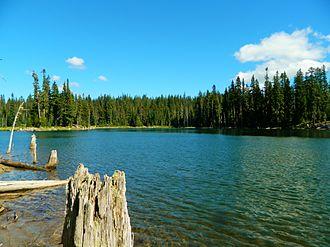 Horseshoe Lake (Washington) - Image: Horseshoe Lake 2