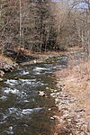 Hunlock Creek looking upstream.JPG
