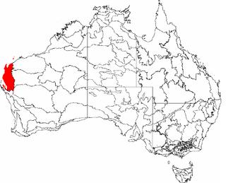 Carnarvon xeric shrublands - The IBRA regions, with Carnarvon in red