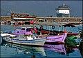 Il porto turistico - panoramio (1).jpg