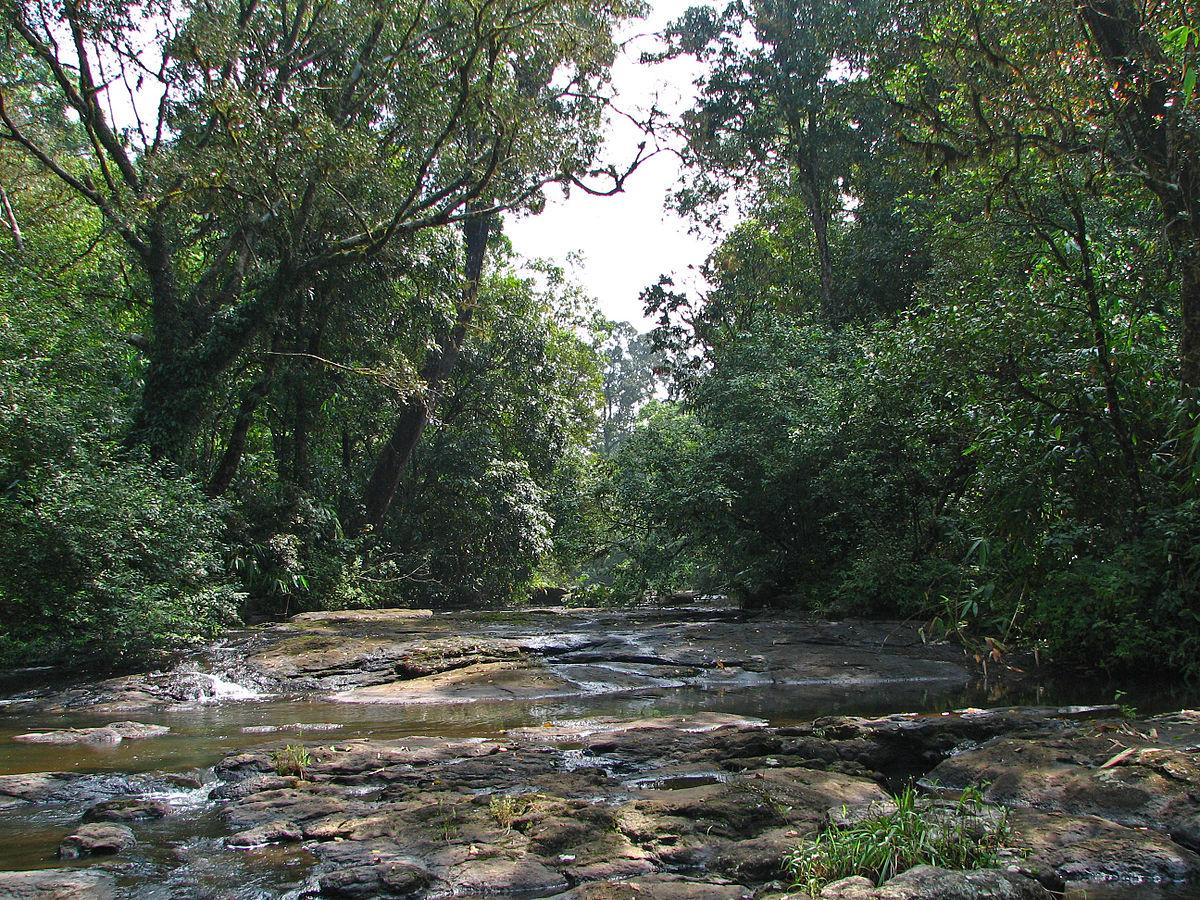 Kerala Travel Guide At Wikivoyage