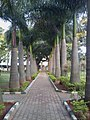 Inner Circle Park.jpg