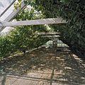 Interieur van A-kas - Honselersdijk - 20405447 - RCE.jpg