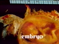 Introducción de 'Embryo'.png
