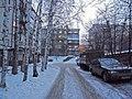Irkutsk. Akademgorodok. February 2013 - panoramio (192).jpg