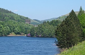 River Derwent, Derbyshire - Image: Island in Derwent Reservoir, with Howden Dam behind