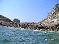 Islas Ballestas - panoramio (17).jpg