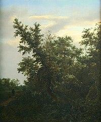 J.I. van Ruisdael - Bosgezicht - NK2447 - Museum Boijmans Van Beuningen.jpg