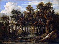 Jacob Isaaksz. van Ruisdael 015.jpg