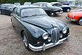Jaguar (1854981806).jpg