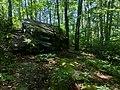 Jake's Rocks Overlook Trail - 20200806 - 04.jpg