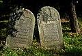 Jewish cemetery Szydlowiec IMGP7678.jpg