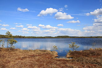 Järva County - Image: Kakerdi järv Kakerdaja raba