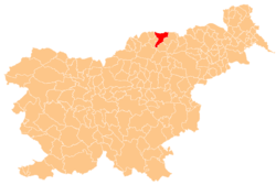 Location of the Municipality of Radlje ob Dravi in Slovenia