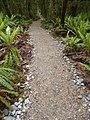 Kepler Track, New Zealand (72).JPG