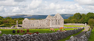 Kilmacduagh monastery - Augustinian Abbey of St. Mary de Petra, erected in the 13th century