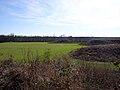 Kincaid Site mounds HRoe 07.jpg