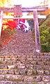 Kinomotocho Ishimichi, Nagahama, Shiga Prefecture 529-0412, Japan - panoramio.jpg