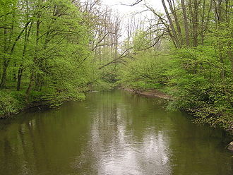 Kinzig (Main) - Kinzig in the Bulau near Hanau
