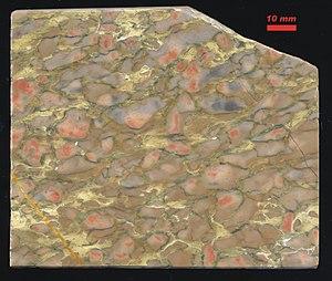 Nodule (geology) - Devonian nodular limestone