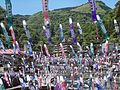 Koinobori in Tsuetate Onsen May 2014 02.jpg