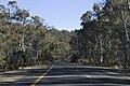 Kosciuszko National Park NSW 2627, Australia - panoramio (157).jpg