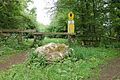 Kreis Pinneberg, Naturschutzgebiet Liether Kalkgrube 11.jpg