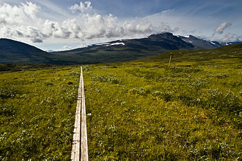 Kungsleden hiking trail, in Swedish Lappland, ...