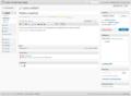 Kuvakaappaus-Lisää artikkeli-WordPress-3.1-alpha.png