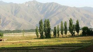 Kuza Bandai Union councils & village of Pakistan in Khyber Pakhtunkhwa