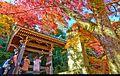 Kyoto (16040166131).jpg
