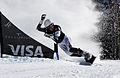 LG Snowboard FIS World Cup (5435316749).jpg
