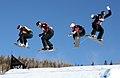 LG Snowboard FIS World Cup (5435317853).jpg