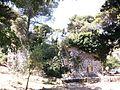 La Funtanazza (Monte Bonifato, Alcamo) 03.jpg