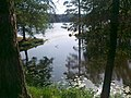 Lake - panoramio (19).jpg