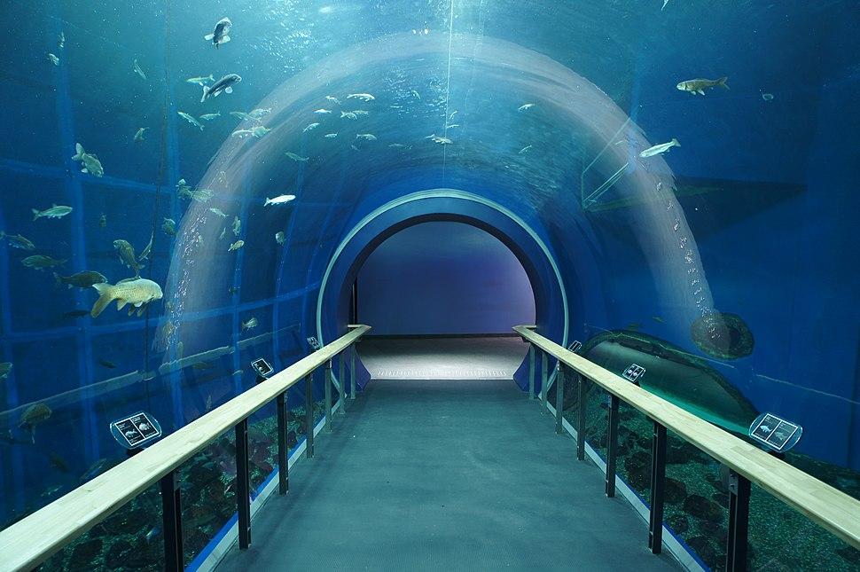 Lake Biwa Aquarium
