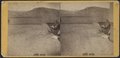 Lake Champlain, Whitehall, N.Y., with baby in carriage, by I. D. Labarre.png