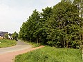 Landschaftsschutzgebiet Wäldchen bei Buer Melle Datei 27.jpg
