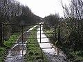 Lane, Cloghfin - geograph.org.uk - 1200336.jpg