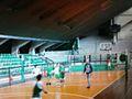 Leoforos Alexandras Basket 1.JPG
