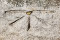 Leytonstone obelisk mark.jpg